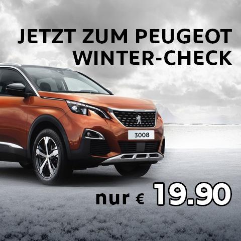 Peugeot Winter Check