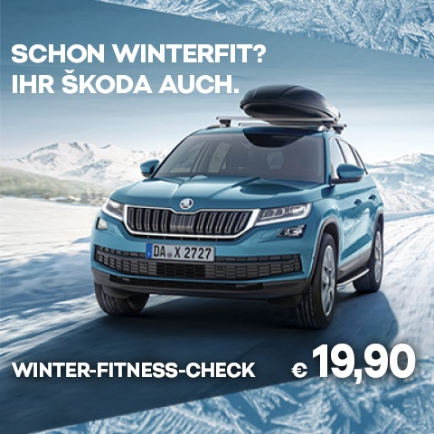 Skoda Service Winter-Check